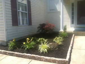 8-26-14_landscaping_after_05a